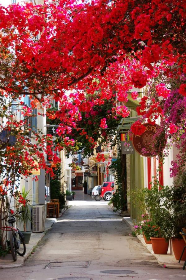 Ναύπλιο, Πελοπόννησος- Ελλάδα