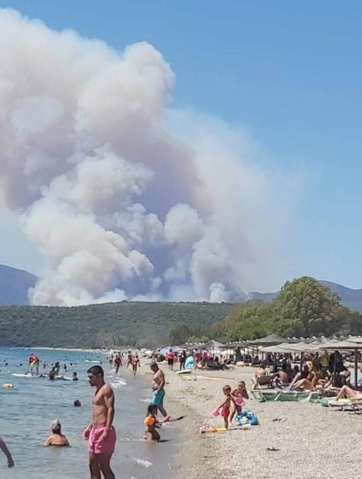Λακωνία φωτιά: Κάηκαν πάνω από 40.000 στρέμματα - Φωτογραφίες