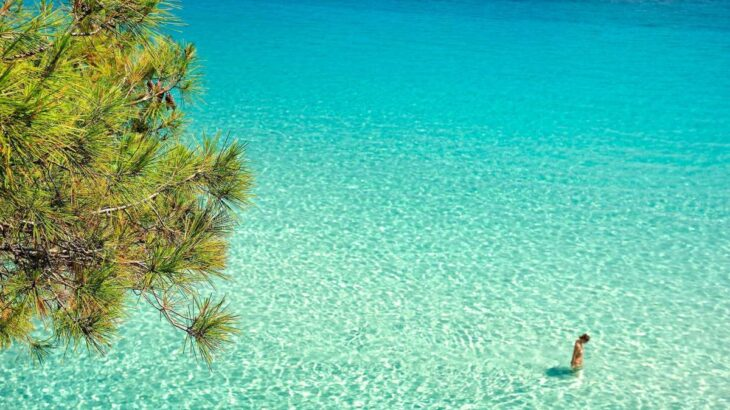 Παραλία Τρίμη: Απίστευτη ομορφιά στην κρυφή παραλία στο Άγιο Όρος