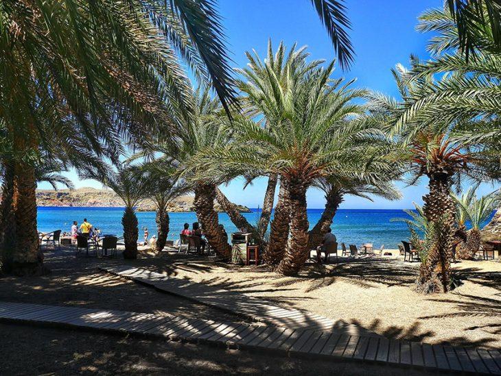 Βάι: Ένα από τα εξωτικότερα μέρη της Ελλάδας γεμάτο φοίνικες