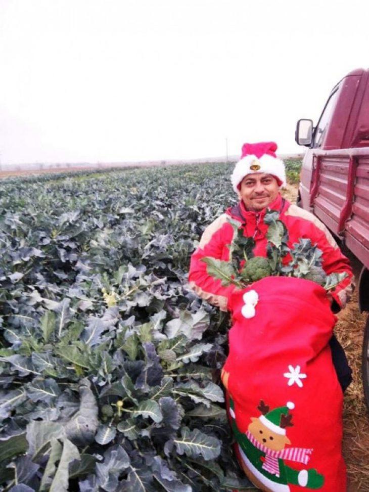 Κιλκίς: Αγρότης καλλιεργεί τα λαχανικά του με τη βοήθεια της μουσικής