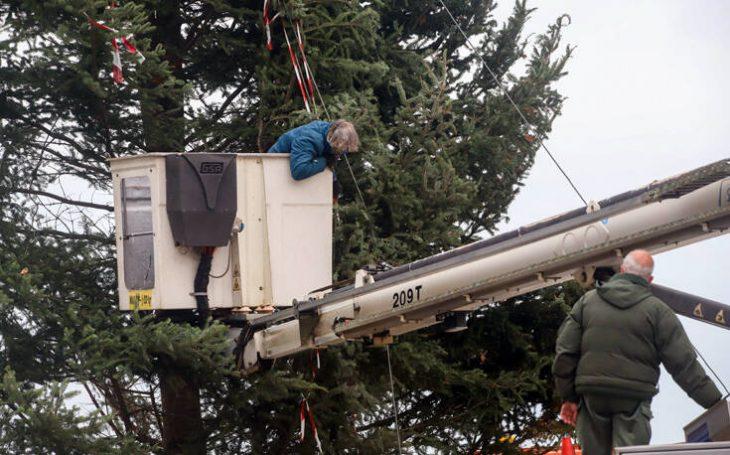 Πλατεία Αριστοτέλους: Θα στηθεί χριστουγεννιάτικο δέντρο 18 μέτρων