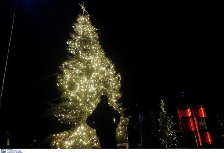 Πλατεία Αριστοτέλους: Φωταγωγήθηκε το χριστουγεννιάτικο δέντρο – Έχει 9.000 λαμπιόνια