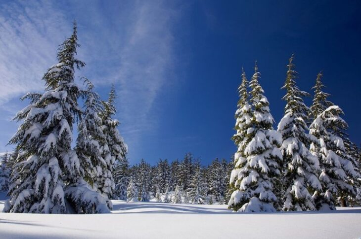 Μερομήνια Χριστουγέννων: Βαρύς θα είναι ο φετινός χειμώνας