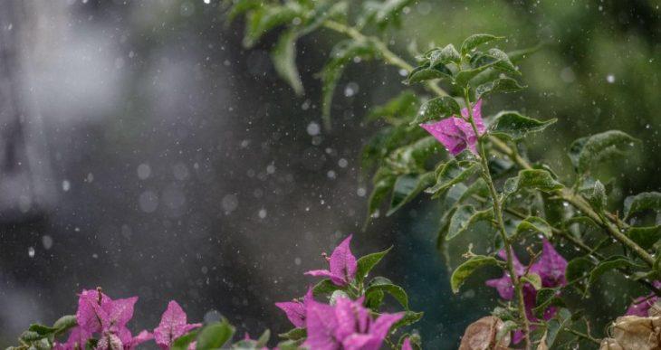 Πρόγνωση καιρού 24/3: Κακοκαιρία με βροχές και χιόνια σήμερα στη χώρα