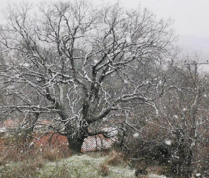 25η Μαρτίου καιρός: Κακοκαιρία την Εθνική Εορτή – Χιόνια ακόμα και στα βόρεια προάστια της Αθήνας