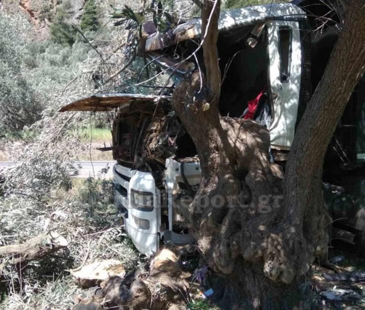 Σοκ στη Φωκίδα: 31χρονος έπεσε με το φορτηγό του πάνω σε ελιά