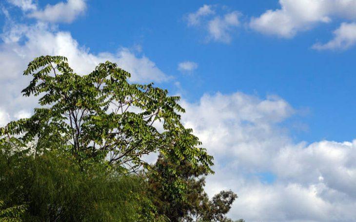 Πρόγνωση καιρού 21/4: Γενικά αίθριος ο καιρός στη χώρα σήμερα