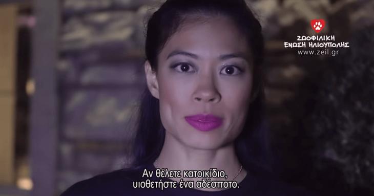 Βανέσσα Μέι: Κάνει εκστρατεία για τα αδέσποτα της Ελλάδας και συγκινεί