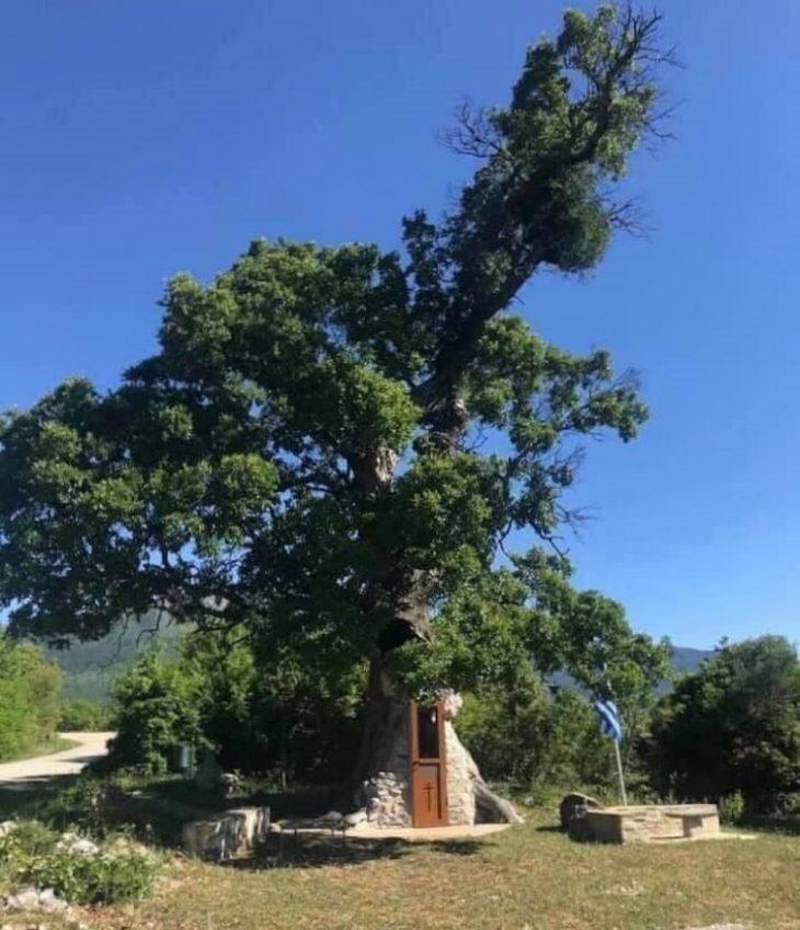 Εκκλησάκι στην Κόνιτσα: Είναι κρυμμένο μέσα σε μια βελανιδιά
