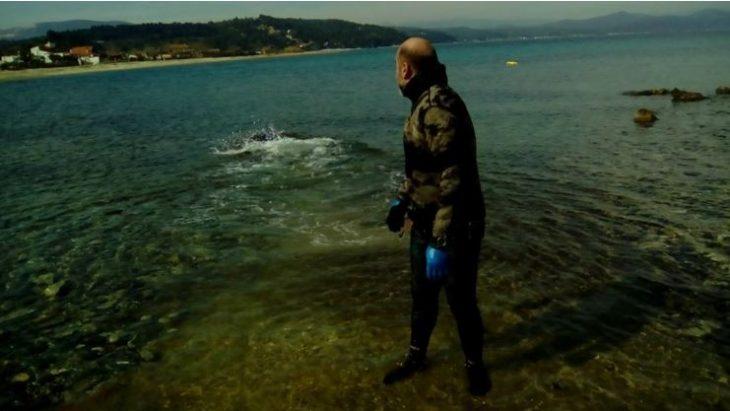 Χρήστος Λάμπρου: Ο ήρωας από τη Χαλκιδική που έσωσε μια μικρή  Φώκια Monachus από βέβαιο θάνατο