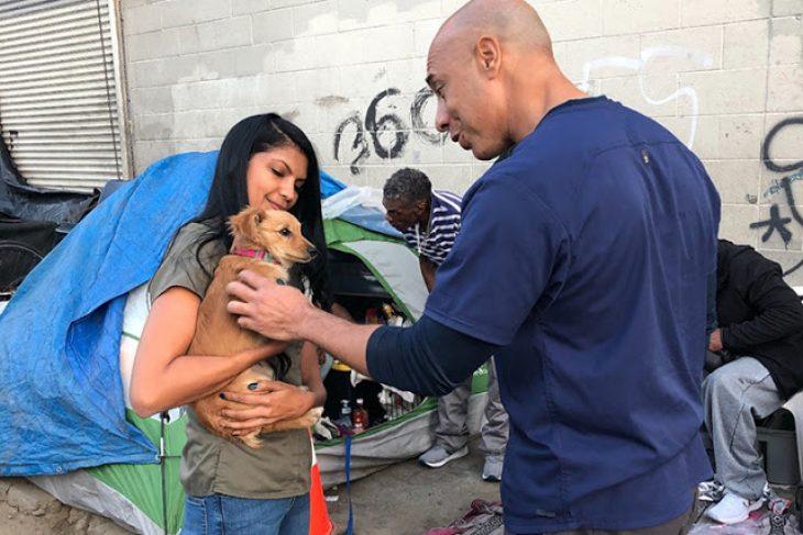 Κτηνίατρος εξετάζει εντελώς δωρεάν αδέσποτα ζώα