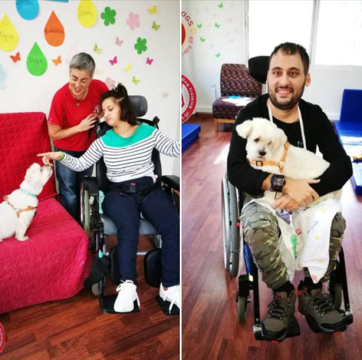 424 Στρατιωτικό νοσοκομείο: Εφαρμόζει θεραπεία μέσω σκύλων