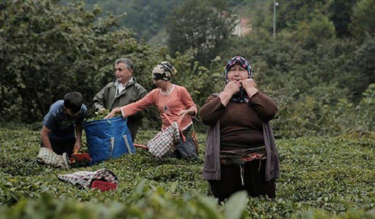 Αντιά: Το χωριό της Εύβοιας που οι κάτοικοι δεν μιλάνε μόνο σφυρίζουν