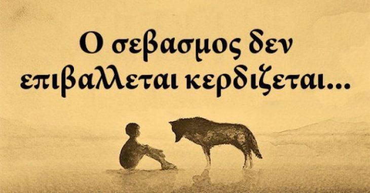 Φωτογραφία της ημέρας: Σεβασμός είναι μια από τις βασικές ιδιότητες
