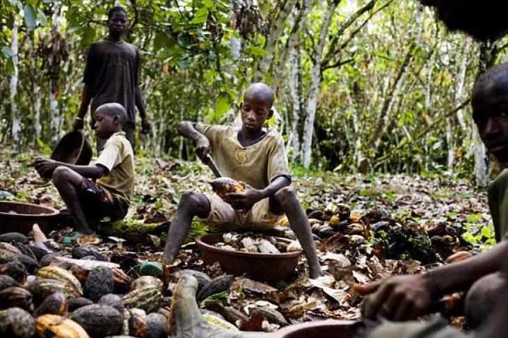 Μαρτυρία παιδιού: «Όταν ο κόσμος τρώει σοκολάτα, τρώει τη σάρκα μου»