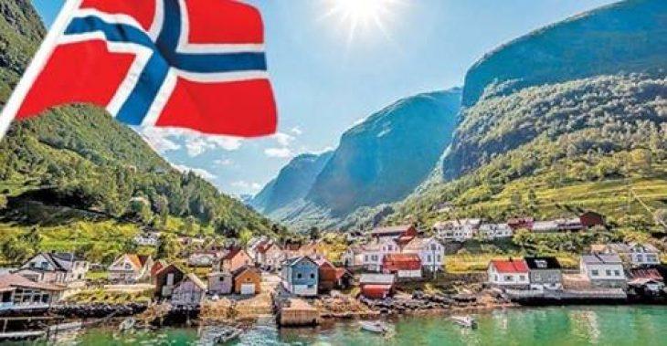 Νορβηγία: Απαγόρευσε την αποψίλωση των δασών