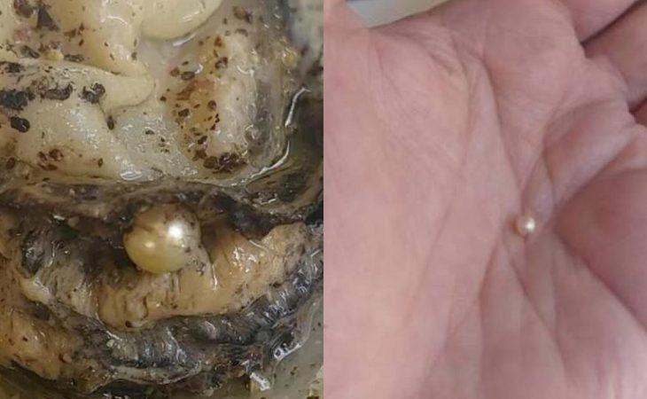 Πάτρα: Απίστευτη τύχη για ιδιοκτήτρια ουζερί – Τα στρείδια της έκρυβαν μέσα μαργαριτάρι