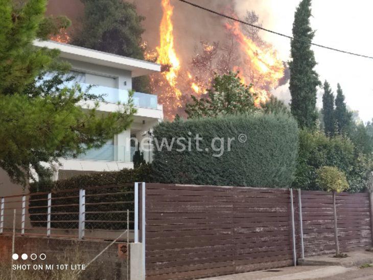 Σταμάτα: Μέσα στα σπίτια η φωτιά! Κάτοικοι φεύγουν για να σωθούν