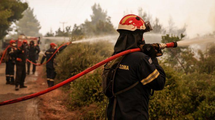 Πυροσβέστες της Εύβοιας: «Μου έδωσαν όχημα χωρίς φρένα και μου είπαν να πηγαίνω… σιγά»