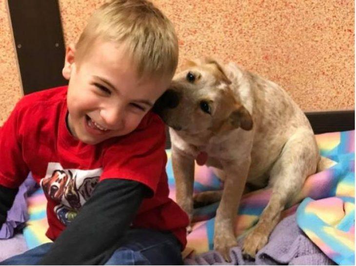 «Παιδί της Χρονιάς»: Αγόρι 7 ετών έσωσε 1.400 σκυλιά