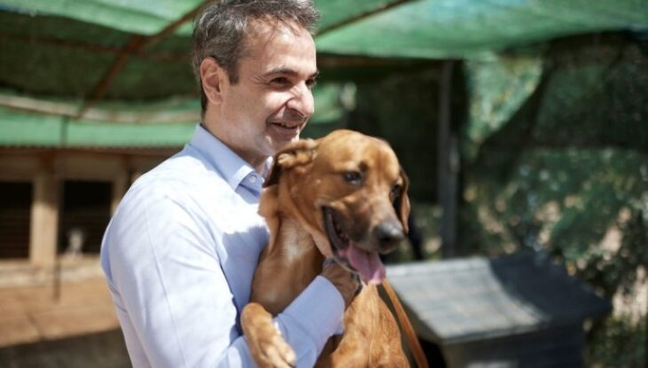 Κυριάκος Μητσοτάκης: «Κανένα ζώο αδέσποτο, κανένα ζώο κακοποιημένο»